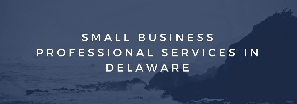 Small Business Professional Services in Delaware