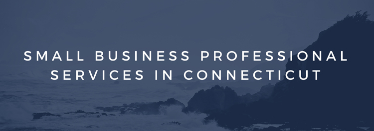 Small Business Professional Services in Connecticut