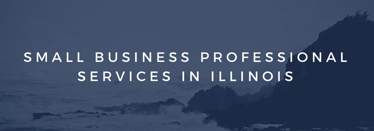 Small Business Professional Services in Illinois