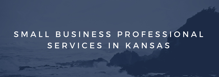 Small Business Professional Services in Kansas
