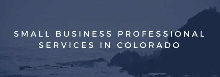 Small Business Professional Services in Colorado