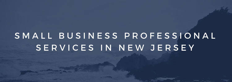 Small Business Professional Services in New Jersey
