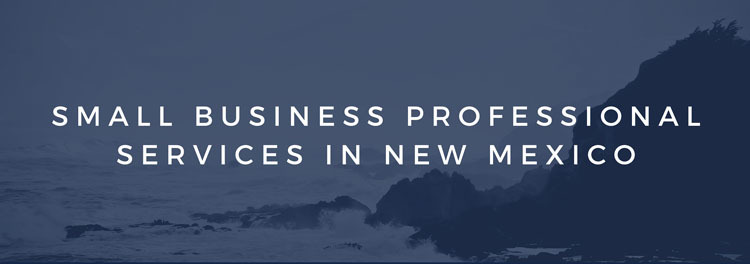 Small Business Professional Services in New Mexico