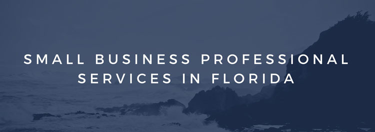 Small Business Professional Services in Florida