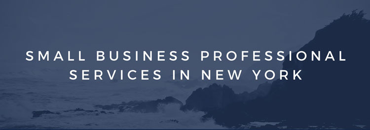 Small Business Professional Services in New York