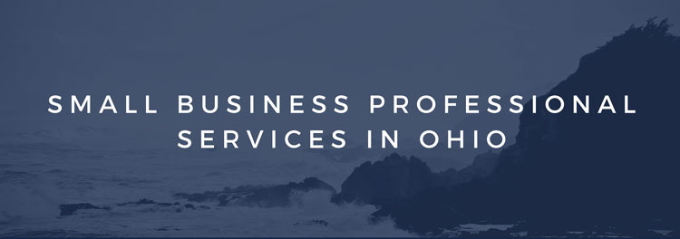 Small Business Professional Services in Ohio