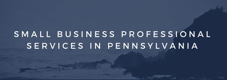 Small Business Professional Services in Pennsylvania
