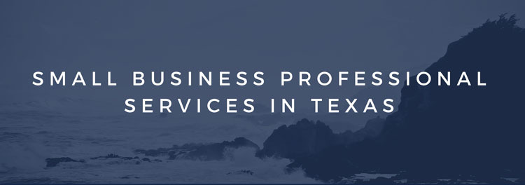 Small Business Professional Services in Texas