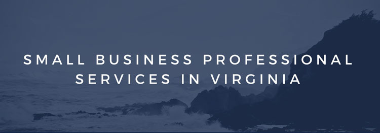 Small Business Professional Services in Virginia