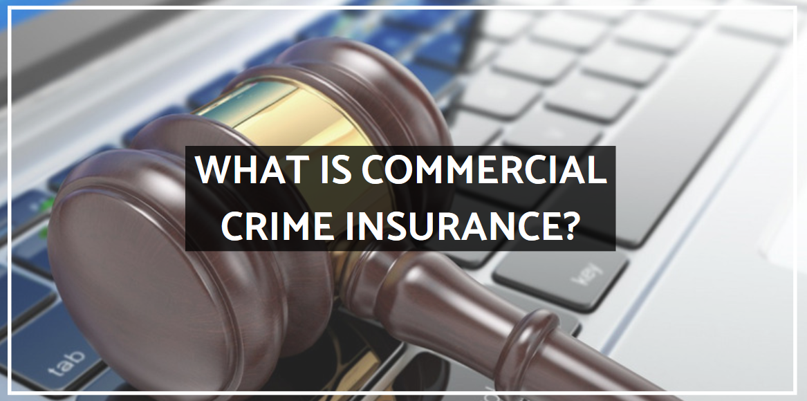 What Is Commercial Crime Insurance?